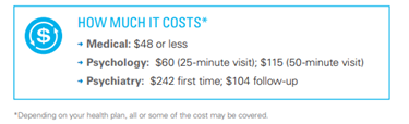 How much it costs image